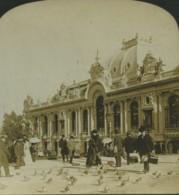 Monaco Monte Carlo Casino Pigeons Ancienne Photo Stereo Stereoscope White 1900 - Stereoscopic