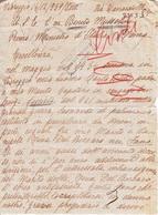 ** VIAREGGIO.- (LU).- A. S. E. BENITO MUSSOLINI.- PRIMO MINISTRO D' ITALIA.-1939.-  ** - Manuscritos