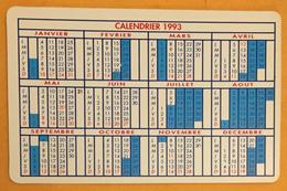 CALENDRIER FORMAT CARTE BANCAIRE RADIO FRANCE ORLEANS 1993 EN PLASTIC - Calendars