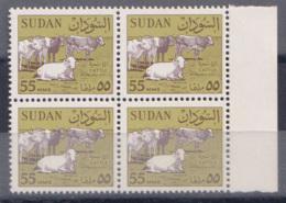 SDS05468 Sudan 1962 Cattle 55m Definitive / Block Margin 4 Stamps /MNH - Sudan (1954-...)