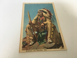 AF - 6 - Acee Blue Eagle, Famous Oklahoma Indian Artist - Native Americans