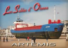 LES SABLES D'OLONNE ARTEMIS 2008 - Commercio