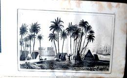 POLYNESIE MICRONESIE NEW ZELAND TAHITI HAOUAI  RECUEIL DE 100 GRAVURES +  1 CARTE 1836  PAYS  ETHNOLOGIE ART PRIMITIF - Books, Magazines, Comics