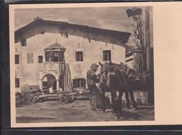 B57 /   Kunstkarte HDK Haus Deutscher Kunst 127 /  Dorfplatz Pferde  / Variante S. Bild - Otros Ilustradores