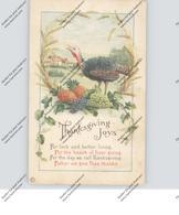 THANKSGIVING / Erntedankfest, Truthahn - Thanksgiving