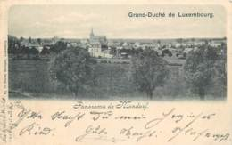 Luxembourg -  Panorama De Mondorf - Edit. Ch. Bernhoeft N° 71 - Mondorf-les-Bains
