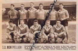 1954 : FOOTBALL, L'EQUIPE DU S.O. MONTPELLIER, DIVISION II, CHAMPIONNAT DE FRANCE, LINSKENS, MOLINARI, TEISSEIRE, CALVET - Vieux Papiers