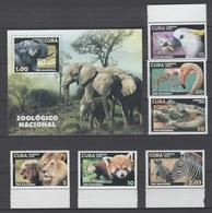 Cuba 2008 Kuba Mi 5100-5105 + Block 244 Lion, Cockatoo, Diamond Crocodile, Flamingo, Damara Zebra, African Elephant MNH - Eléphants