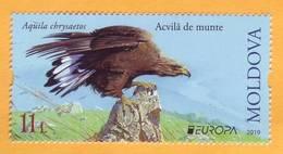 2019 Moldova Moldavie Europa-cept  Fauna, Birds, Eagles 1v Mint - Eagles & Birds Of Prey