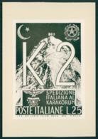 Spedizione K2 40esimo Anniversario Della Prima Salita 1954 Bozza Del Francobollo Mai Stampato FG SP37 - Unclassified
