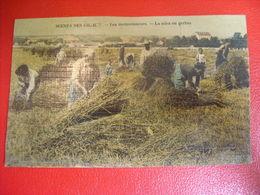 Scènes Des Champs - Les Moissonneurs - La Mise En Gerbes - Cultivation