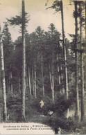 01 - Virieu-le-Petit - Clairière Dans La Forêt D'Arvières - Autres Communes