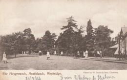 England Postcard Surrey Heathlands Weybridge - Surrey