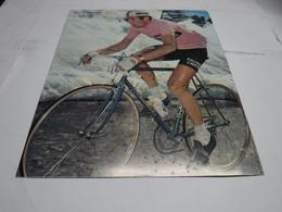 SPORT  CICLISMO  --   SU CARTONATO --  GRANDE  -- FELICE GIMONDI - Ciclismo