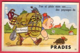 66 PRADES - J'en Ai Plein Mon Sac ... Des Paysages De Prades - Carte à Système - Prades