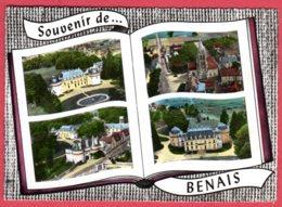 37 Souvenir De BENAIS - Otros Municipios