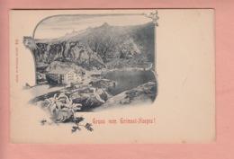 OUDE POSTKAART ZWITSERLAND - SCHWEIZ -    GRIMSEL HOSPIZ  1900'S  - EDELWEISS - BE Berne