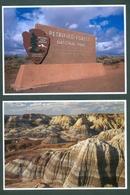 UNITED STATES -  PETRIFIED FOREST NATIONAL PÁRK -  ARIZONA   2 CARDS - Mesa