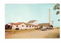 NEEPAWA, Manitoba, Canada, Canadian Salt Co. Ltd, 1979 Chrome Postcard - Other