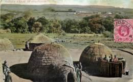 South-Africa - Natal - Native Kraal In Zululand - Afrique Du Sud