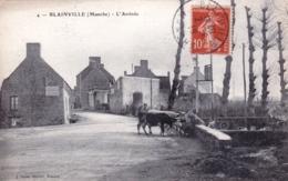50 - Manche - BLAINVILLE - L Arrivée - Les Vaches Dans Le Village - Lavoir - Blainville Sur Mer
