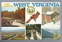 US.- WEST VERGINIA. WILD WONDERFUL. - Alexandria