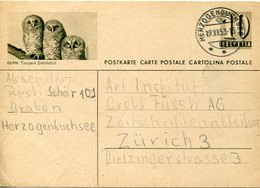 54346 Switzerland, Stationery Card  Circuled 1953 10rp. Showing Owl,  Hiboux  Eulen, Bern Tierpark - Owls