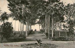 OCEANIE - SAMOA - Greeting From SAMOA - Très Bon état - 1910 - Très Bon état - Samoa