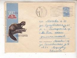 USSR Russia 1966 Consumer Cooperation. Marten - Storia Postale