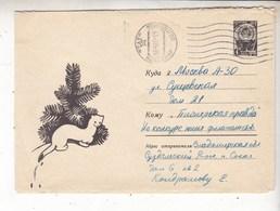 USSR Russia 1966 Ermine - Briefe U. Dokumente