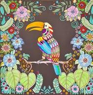 Dessin Coloriage Toucan - Pasatiempos Creativos