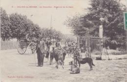 THEMES - AGRICULTURE - PAYSAN - LE CHEVRIER - 64 SALIES-DE-BEARN - AVENUE DE LA GARE - BEAU PLAN BON ETAT - Elevage