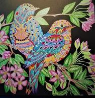 Dessin Coloriage Couple D'oiseaux - Pasatiempos Creativos