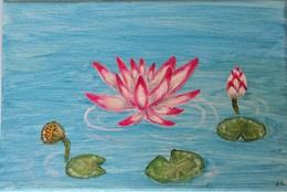 Peinture Fleur De Lotus Rose - Loisirs Créatifs