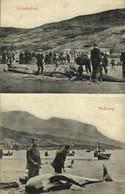 Denmark, Faroe Islands, MIDVAAG, Grindedrab Whaling (1910s) Postcard - Faroe Islands