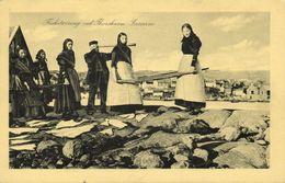 Denmark, Faroe Islands, TORSHAVN, Fisketørring, Telescope (1930s) Postcard - Islas Feroe