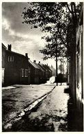 Denmark, Faroe Islands, TORSHAVN, Tróndargøta, Street Scene (1950s) Postcard - Féroé (Iles)