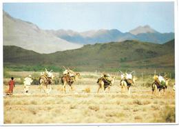 Caravane - République De Djibouti - Ed. COULEUR LOCALE N° 25 - 1991 - Chameaux Dromadaires Camels - Gibuti