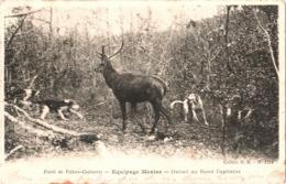CPA 02 (Aisne) Villers-Cotterêts - La Forêt, équipage H. Menier 1214. Hallali Au Rond Capitaine 1905 Chasse, Vênerie - Villers Cotterets
