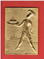 MEDAILLE PRAGUE TCHEQUIE 1934 EXPOSITION D ART ECOLE PROFESSIONNELLE DE CONFISERIE ET RESTAURATION CUISINIER PRAHA - Firma's