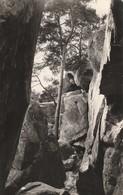 MALESHERBES Les Rochers (noir Glacée) - Malesherbes