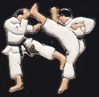 64869 -Pin's-Karaté - Judo