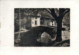 Blesle (43) : Le Vieux Pont Sur La Voireuse En 1966 GF - Blesle