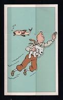 CP Tintin Double En 2 Dimensions HERGE TINTIN LICENSING Publicité BASF ( Format 15,0 Cm X 9,0 Cm ). - Bandes Dessinées