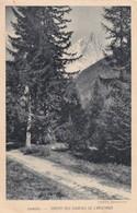 74, Chamonix, Chemin Des Sources De L'Arveyron - Chamonix-Mont-Blanc