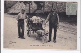 EN SOLOGNE : Attelage De Chiens, Voiture à Chien - Tres Bon Etat - Francia