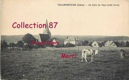 02 ☺♦♦ TAILLEFONTAINE < VACHES Au PATURAGE Et VUE Du VILLAGE Avec L'EGLISE - VACHE - France