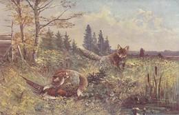 Chasse, Hunting Pheasant  Fuchs Reynard Renard Oiseau  Geflügel Signe A.Müller Old  Cpa. Ca. 1900 - Chasse