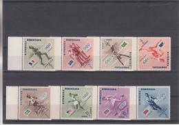 Republica Dominica - Summer 1956: Melbourne