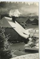 Hiver Dans Le Haut Doubs  ** Belle Carte-photo Neutre ** Ed. Photo Stainacre à Pontarlier - Unclassified